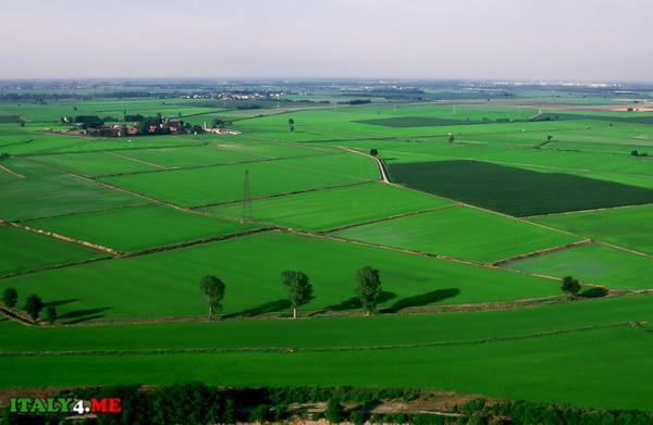 паданская равнина летом