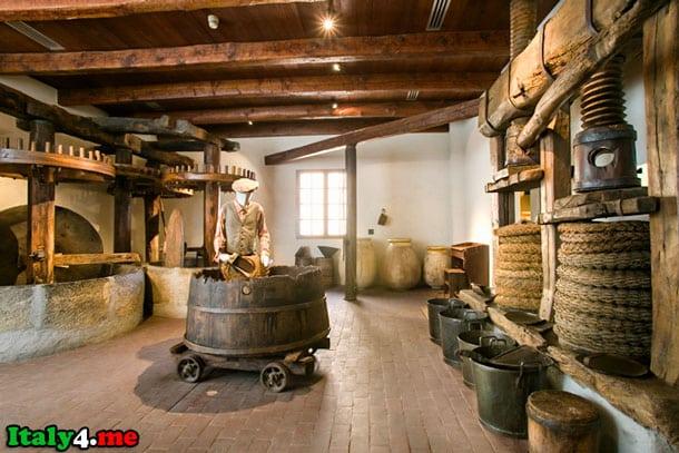 музей олив