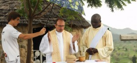 Камерун свяженники