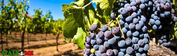 Альберобелло-вино-dolce-naturale