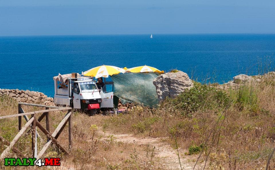 Остров-Фавиньяна-лето-2014-106
