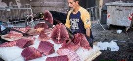 Рыбный рынок Катания
