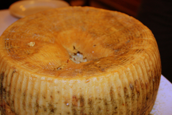 Сыр Casu Marzu