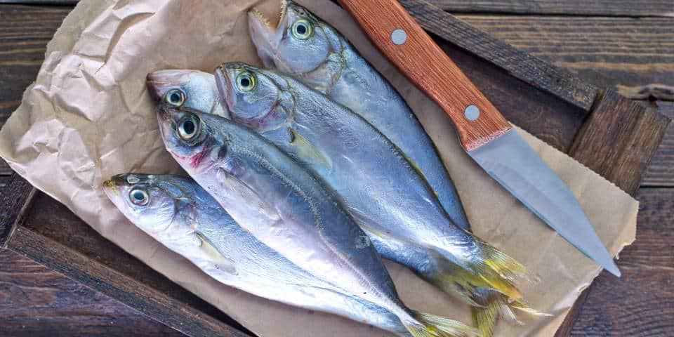 Итальянская рыба