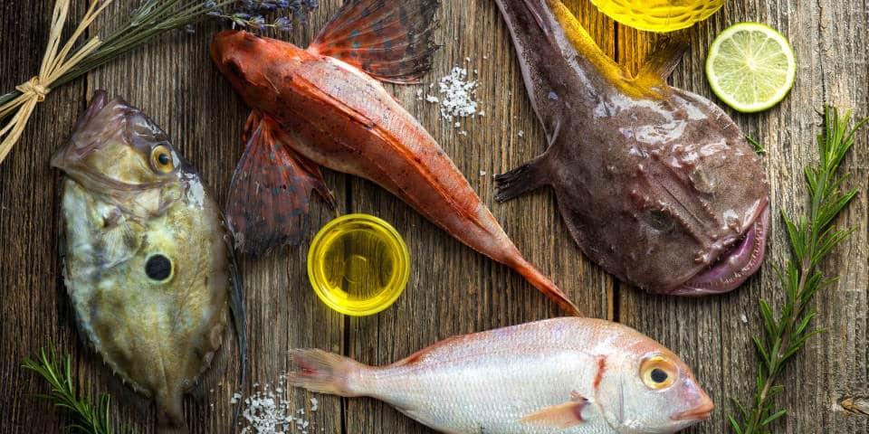 Виды рыбы в Италии