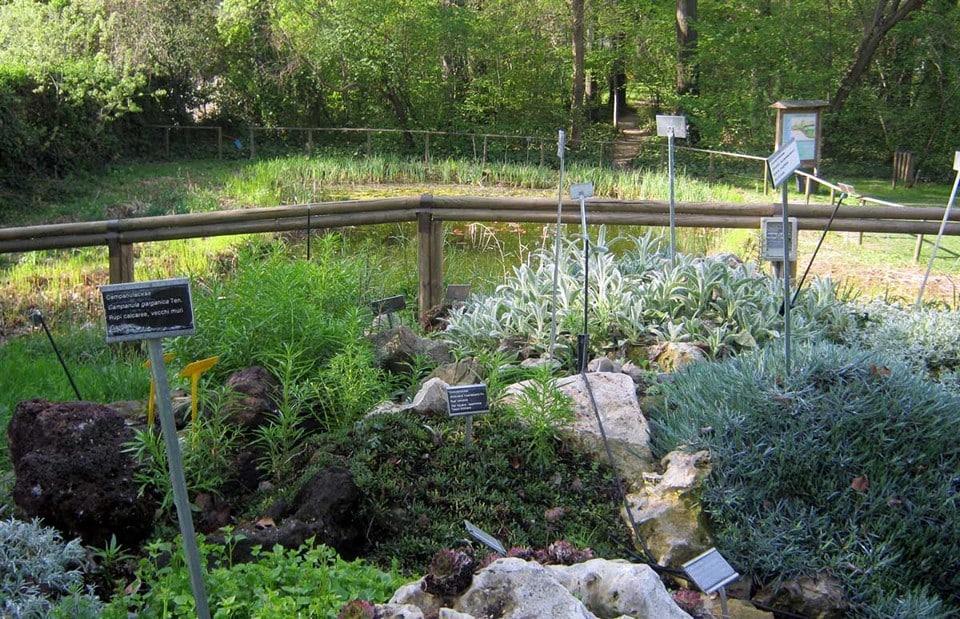 Ботанический сад Болоньи