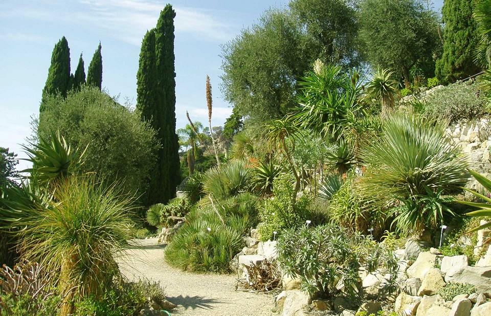 Ботанический сад Генбери
