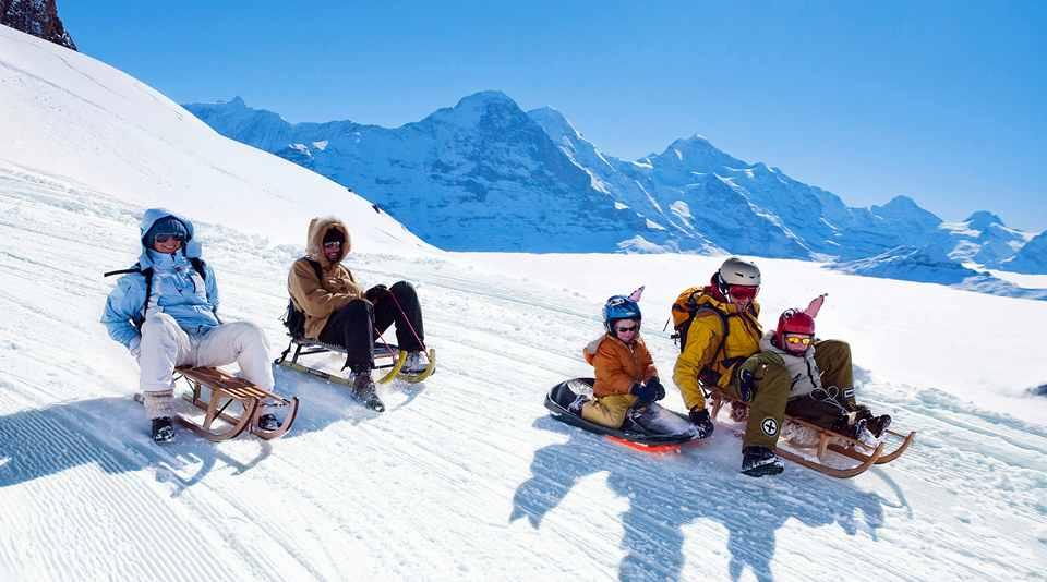 Те, кто неуверенно стоят на лыжах, выбирают сани