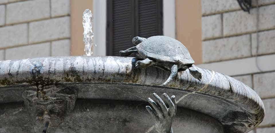 В 1658 году были добавлены четыре черепахи
