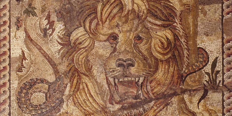 Домус Льва