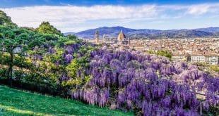 Смотровые площадки во Флоренции