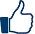 like logo