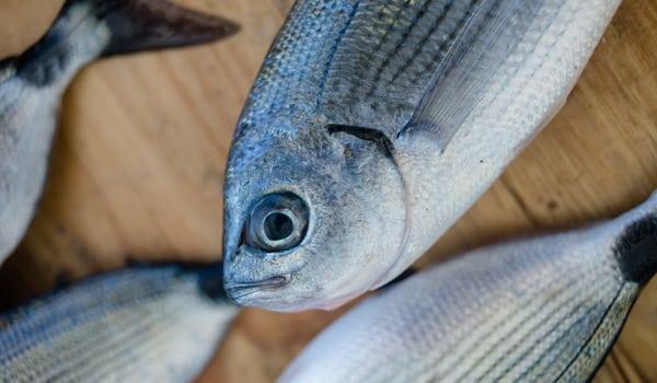 рыбный рынок на Сицилии в Трапани