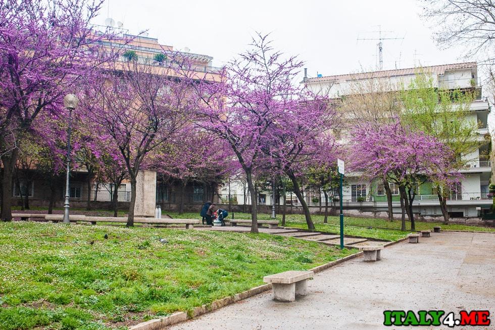 весна Рим
