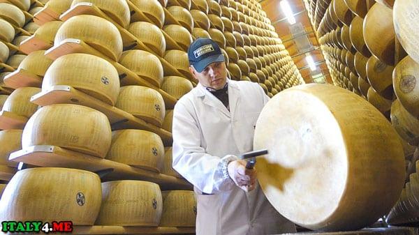Слушатель сыра
