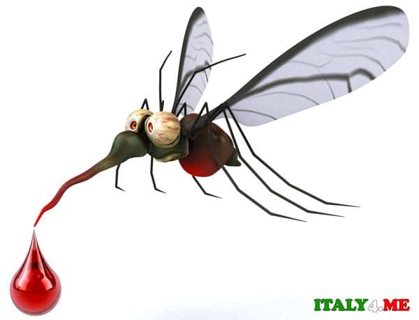 москиты-Италия