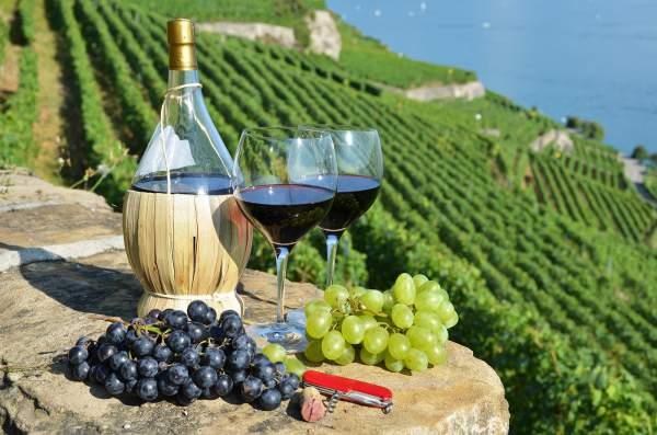 Красное тосканское вино Кьянти