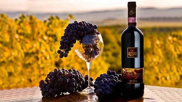 Вино Тосканы Brunello di Montalcino
