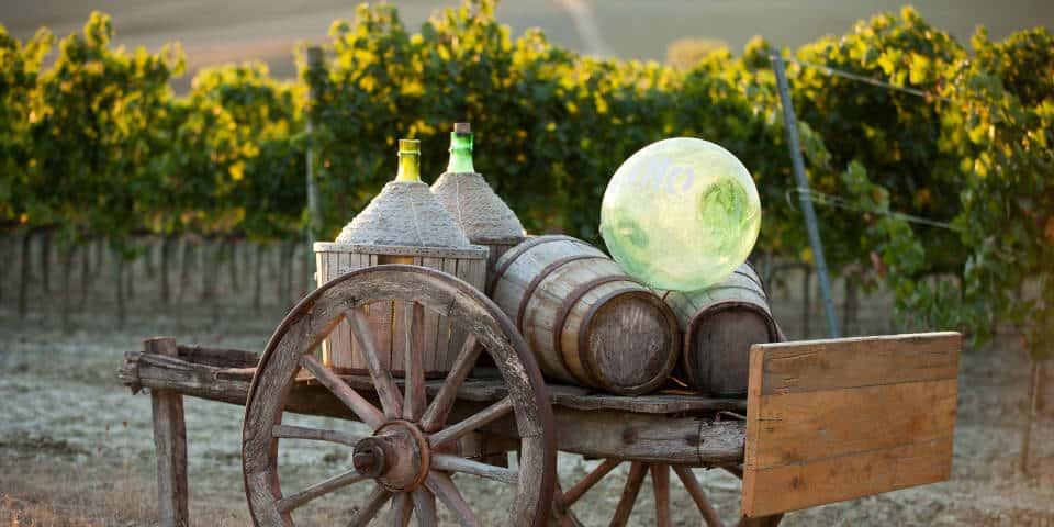 Сбор винограда в Италии