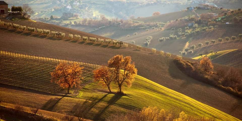 Осенние поля Тоскана