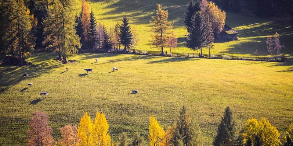Тоскана осенью