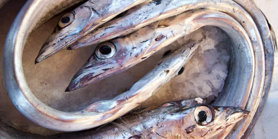 Свежая итальянская рыба