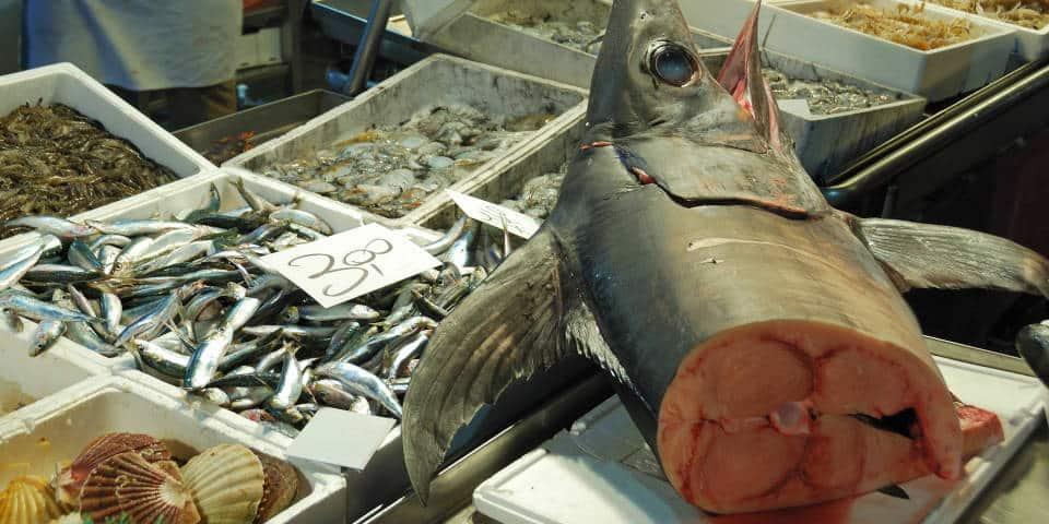 Марлин на рыбном рынке в Италии