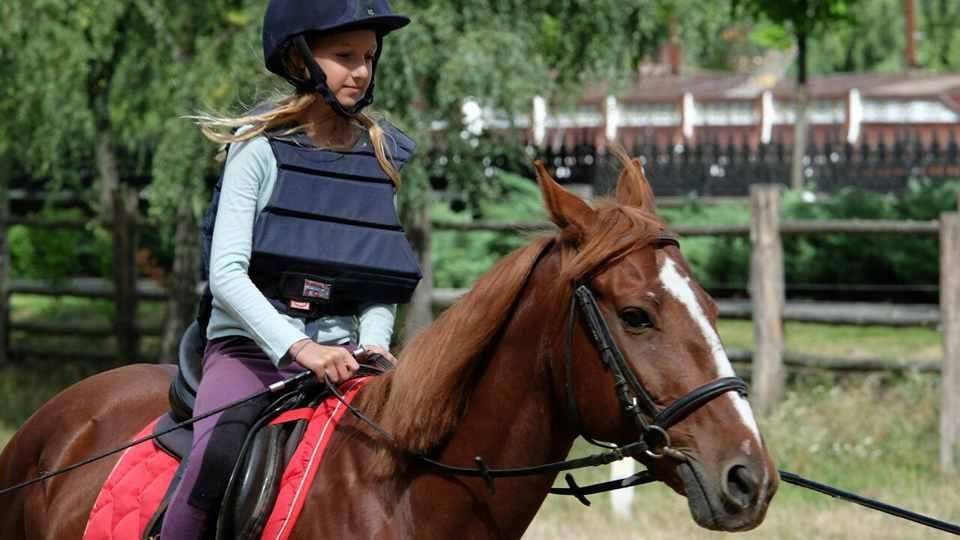 Организация Horse Trekking Dolomiti & Alto Garda
