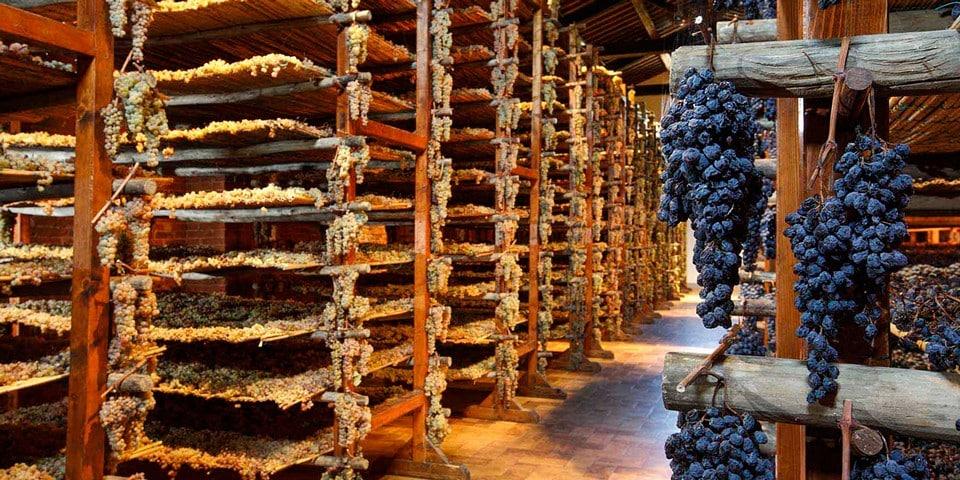 Винодельня Avignonesi
