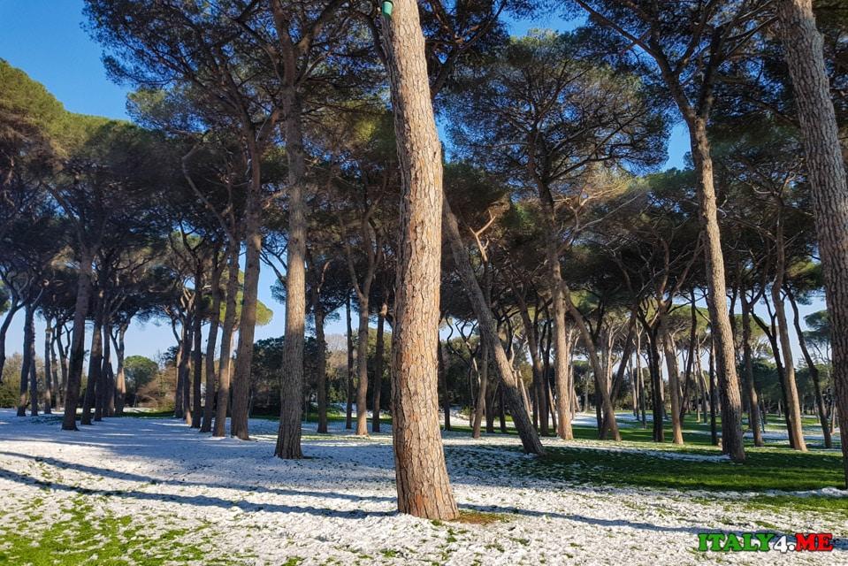 Снег на вилла Дориа Памфили в Риме