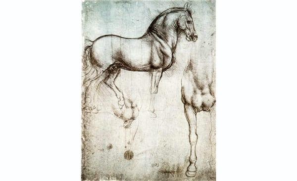 Эскиз конной статуи на двух точках опоры Леонардо да Винчи