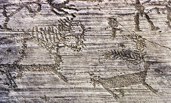 Петроглифы эпохи неолита в Валь-Камонике